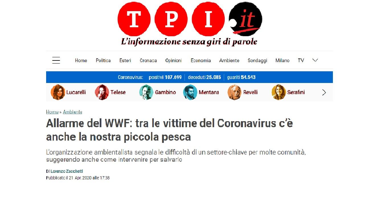 Il WWF lancia l'allarme. Anche la piccola pesca vittima del Coronavirus.